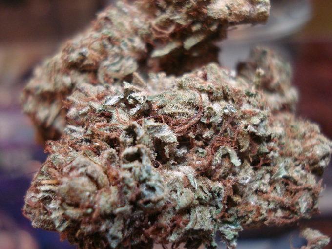 Super Green Crack Marijuana Strain Review