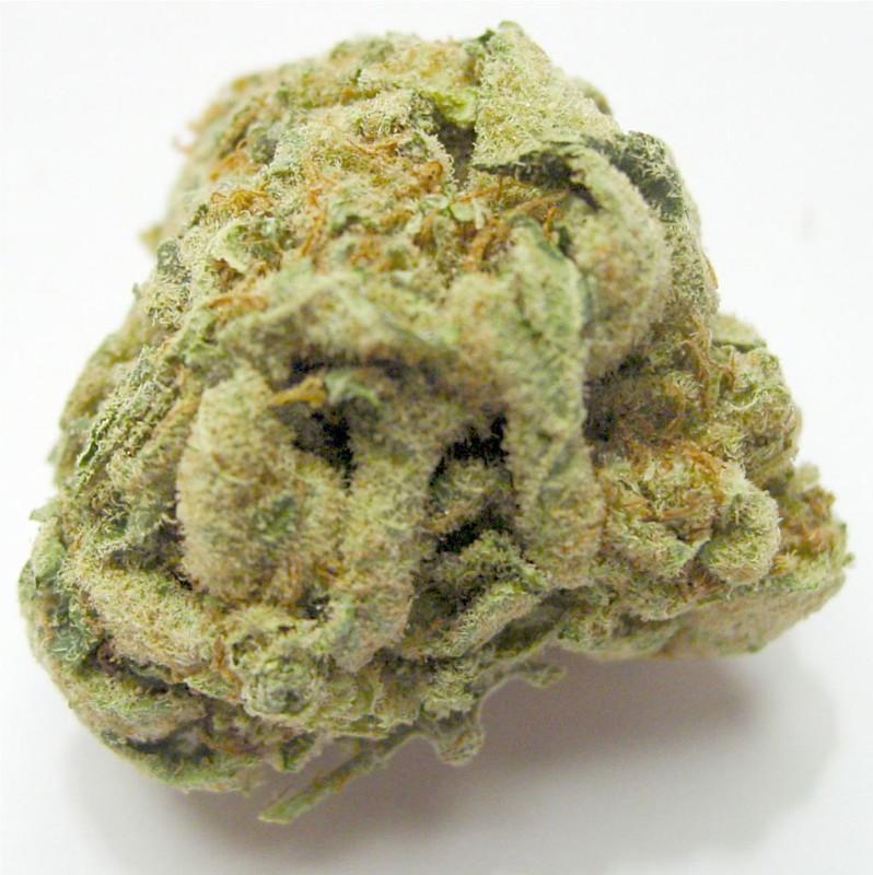 White Gorilla Marijuana Strain Review