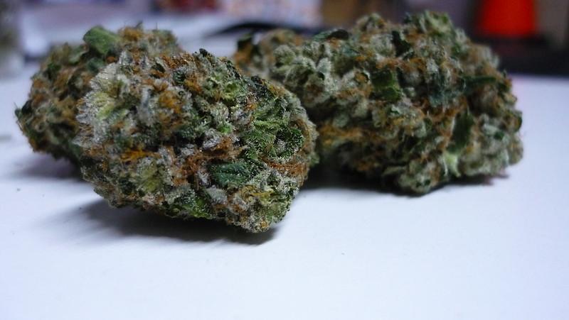 White Girl Marijuana Strain Review