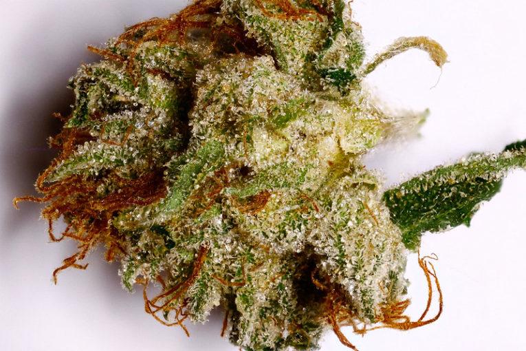 VOTS AZ Super Sour OG Marijuana Strain Review
