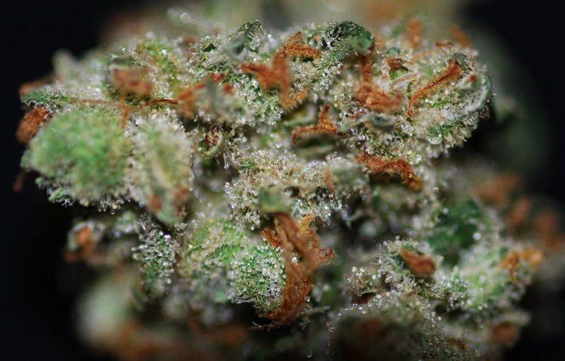 Hardcore OG Marijuana Strain Review