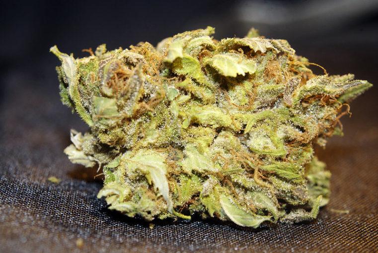 Venus OG Marijuana Strain Review