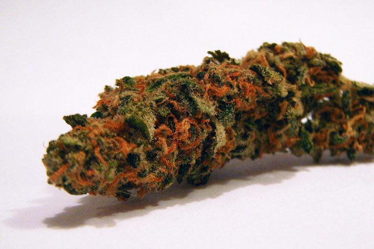 Vanilla Kush Marijuana Strain Review